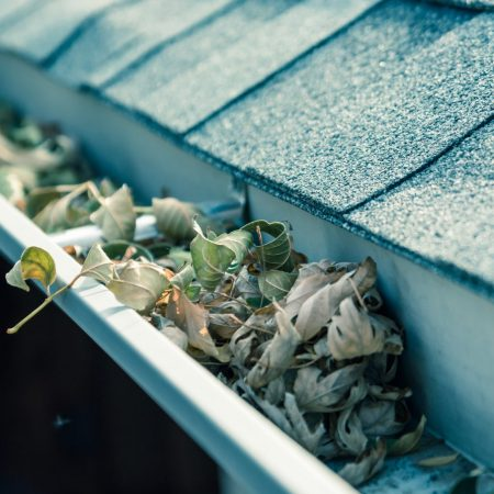 Gutter & Conservatory Cleaning Franchise UK
