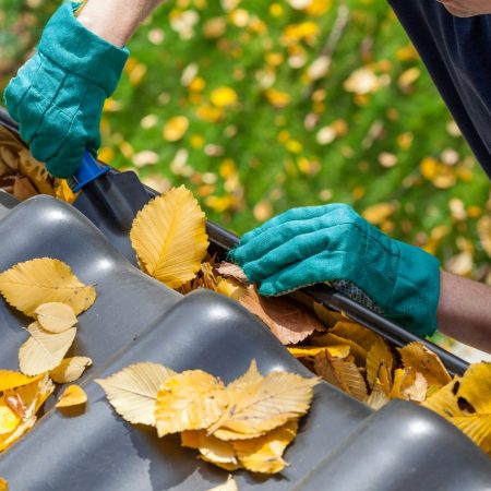 Gutter & Conservatory Cleaning uk Franchise