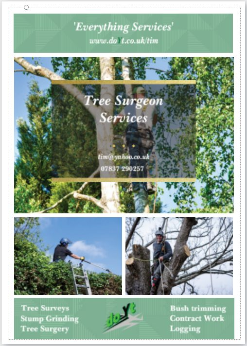 Tree sugeon franchise flyer